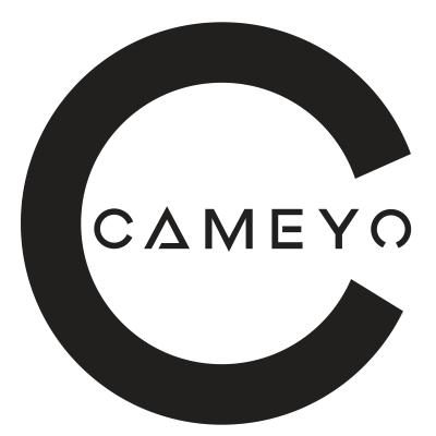 alternatives to cameyo - apps like cameyo